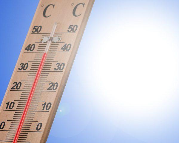 Erb Tipps gegen Hitze